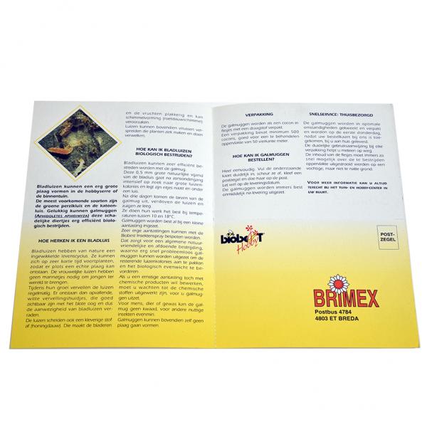bladluizen-galmuggen-2