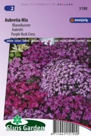 Blauwkussen Aubretia Mix
