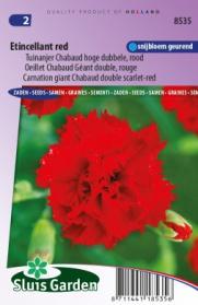 Tuinanjer Chabaud hoge dubbele Etincellant red
