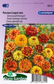 Zinnia Persian Carpet mix