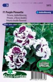 Petunia F1 Purple Pirouette