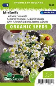 Kamille Echte (Matricaria chamomilla)