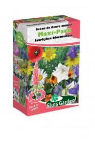 Mengsel Jaarlijkse bloemenzee Maxi-Pack