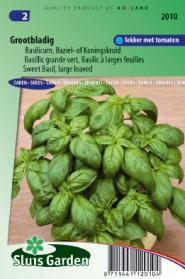 Basilicum Grove (Ocimum basilicum)