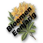 Bloemen Eenjarig