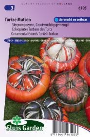 Cucurbita Turkse Muts Grote Vruchten