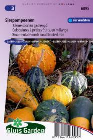 Cucurbita Kleine vruchten gemengd (sierkalebassen)