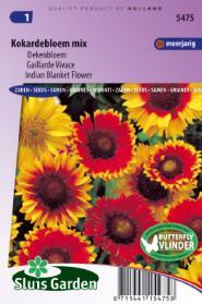 Dekenbloem mix (Kokardebloem of Gaillardia)