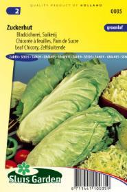 Bladcichorei / Groenlof Zuckerhut Zelfsluitende