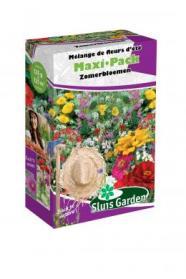 Mengsel Zomerbloemen Maxi-Pack
