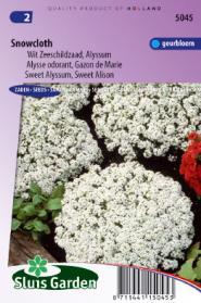 Schildzaad Sneeuwkleed (Alyssum)