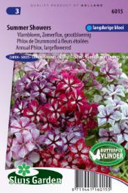 Vlambloem Summer Showers Mix (Phlox)