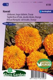 Afrikaan hoog Hawaii oranje
