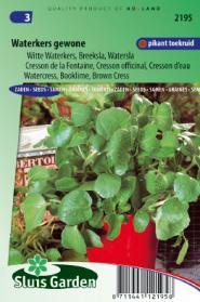 Waterkers Gewone (Nasturtium officinale)