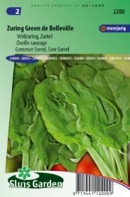 Zuring Green de Belleville (Rumex acetosa)