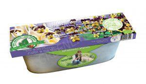 Decoratieve zaai set Driekleurige eetbaar viooltje BIO in zinken bak