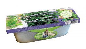 Decoratieve zaai set voor in de keuken Groene Munt BIO in zinken bak