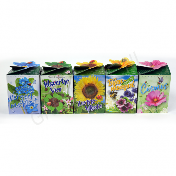flower-gift-pack-nl