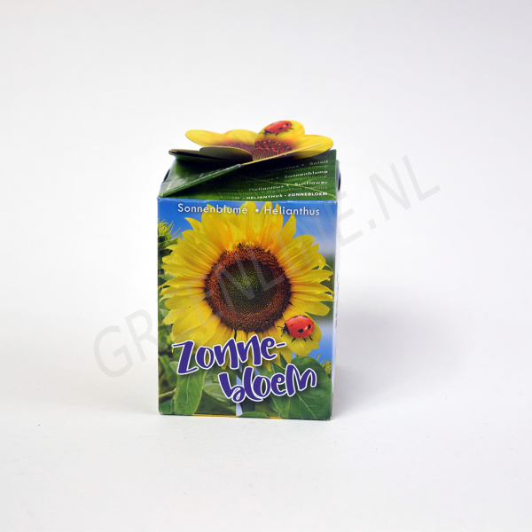 flower-gift-pack-zonnebloem-nl
